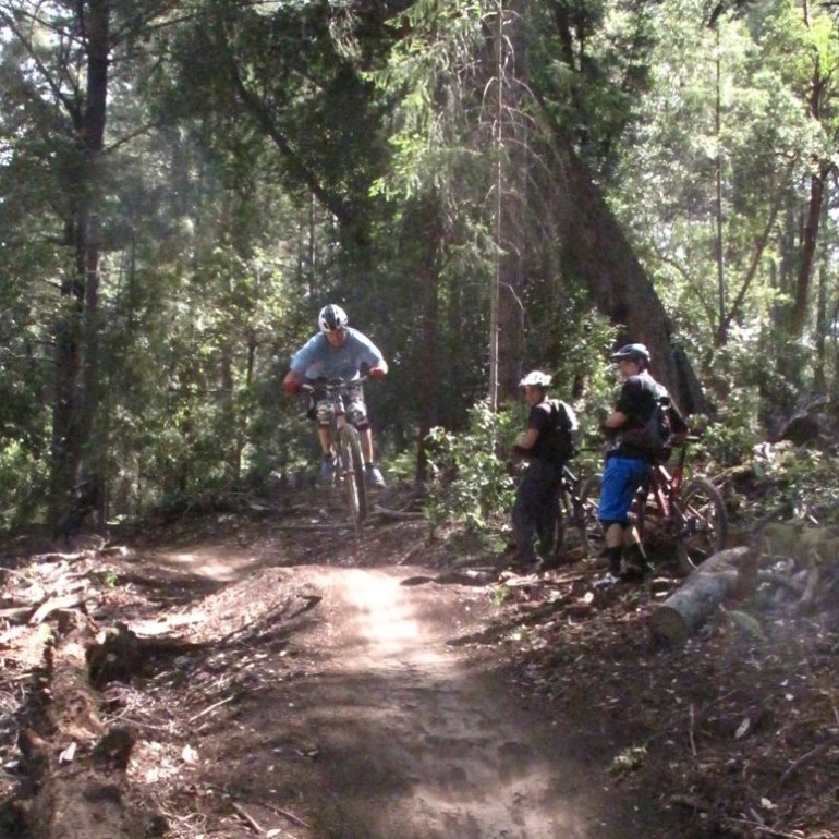 The Soquel Demo Forest Flow Trail