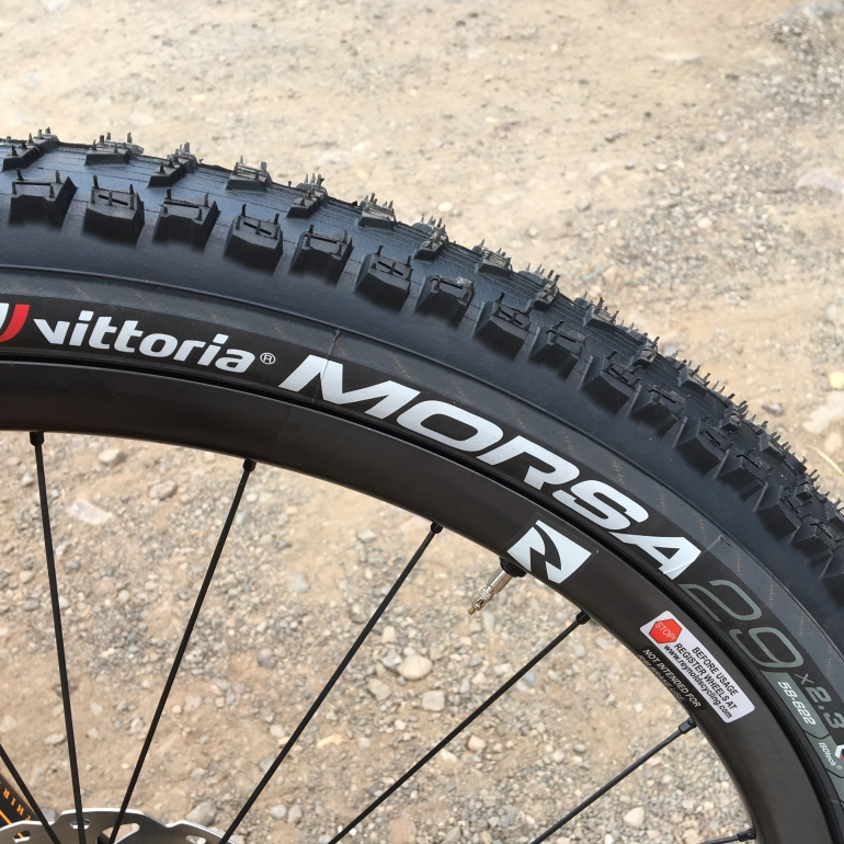 Sand Monster: the Vittoria Morsa MTB Tire